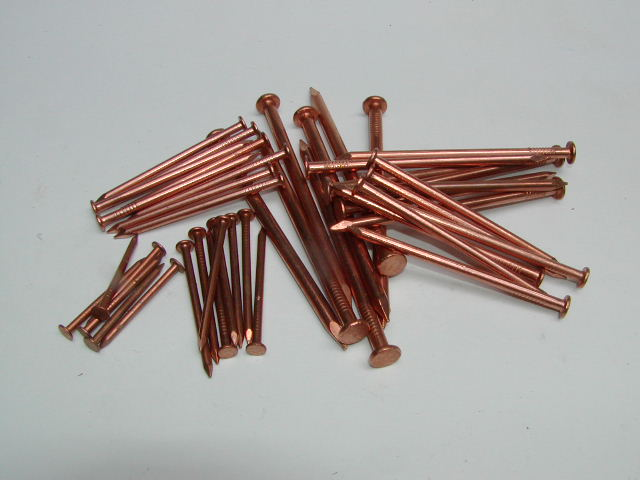 Image result for copper nails